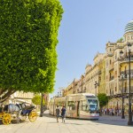 Seville Day Tour