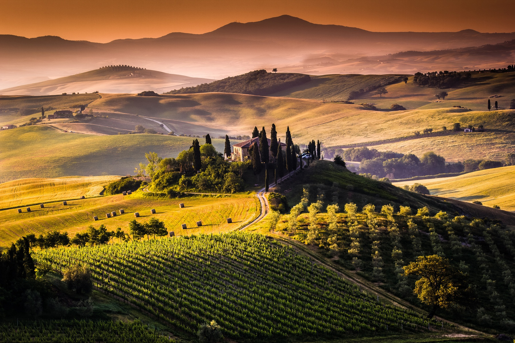 Chianti wine tour enjoy the exceptional taste of one of Toscana house