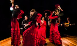 Flamenco Andalusia